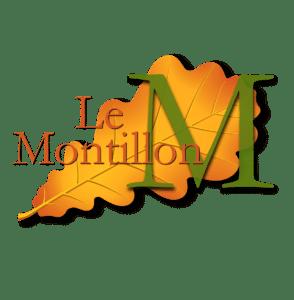 Gite proche de chambord, Cheverny, blois, chenonceau, amboise, Chaumont sur Loire